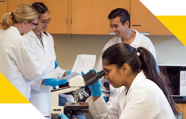 4 scientists